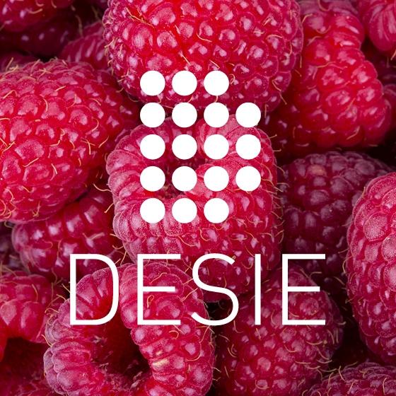 1-DESIE-Logo