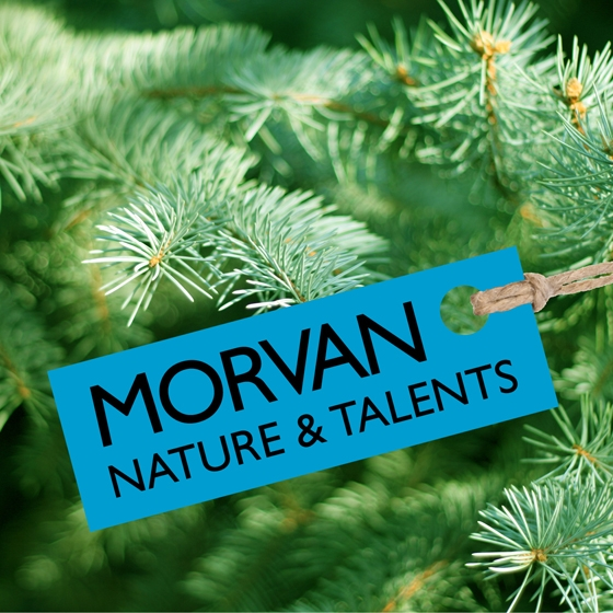 1-Morvan-Nature-et-Talent_Logo